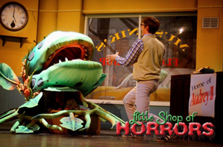 Little Shop of Horrors Stage Show